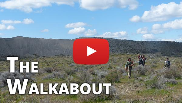 Teen Walkabout Video