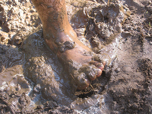 Can Mud Make Us Cleaner?