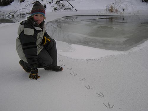 Homeschool Nature Program