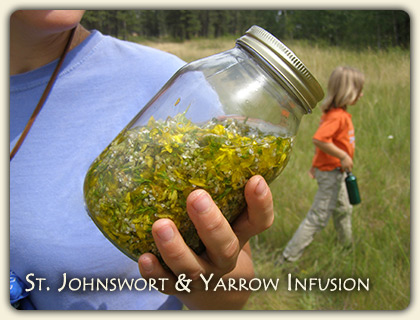 Online Herbal Remedies Advice