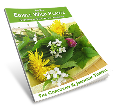 Edible Wild Plants eBook