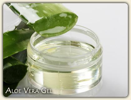 Medicinal Uses of Aloe Vera